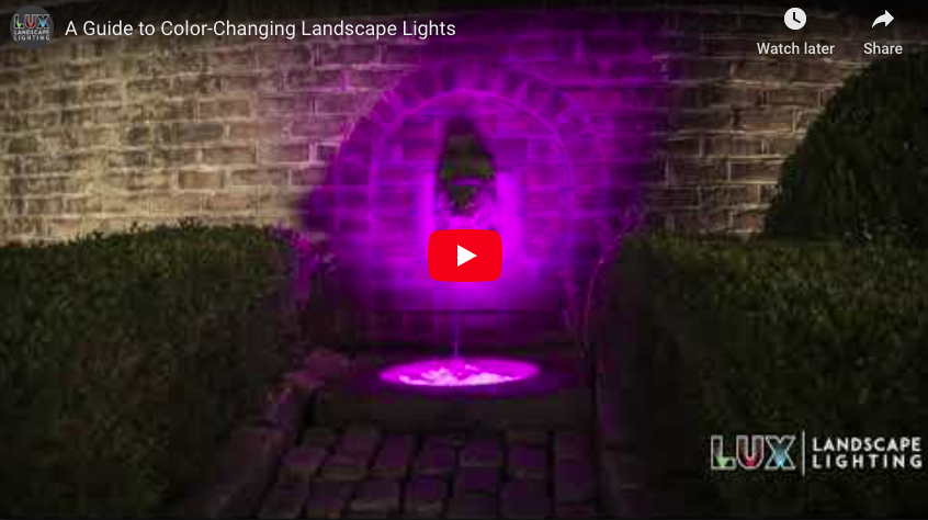 A Guide to Color-Changing Landscape Lights