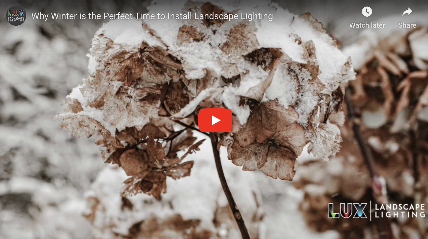 Why Winter is the Perfect Time to Install Landscape Lighting