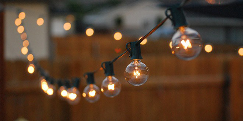 Our Favorite Landscape Lighting Applications for 2019