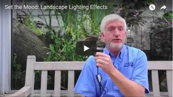 Set the Mood: Landscape Lighting Effects